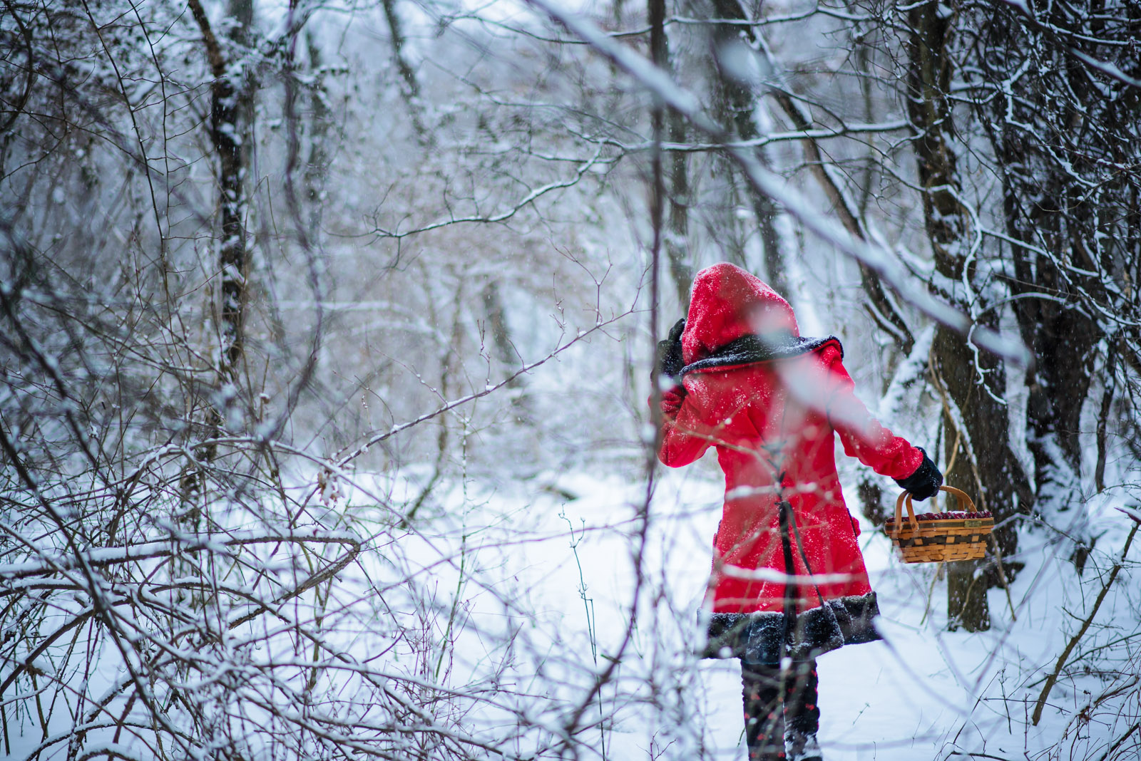20140125_red_riding_hood_0046